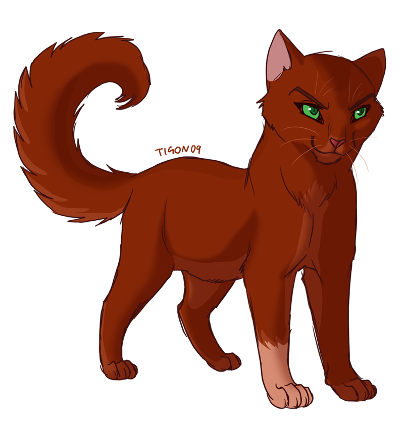 You continue along the way as the fox runs away. Suddenly, you cross the border and a Shadowclan patrol of five cats attaks you!