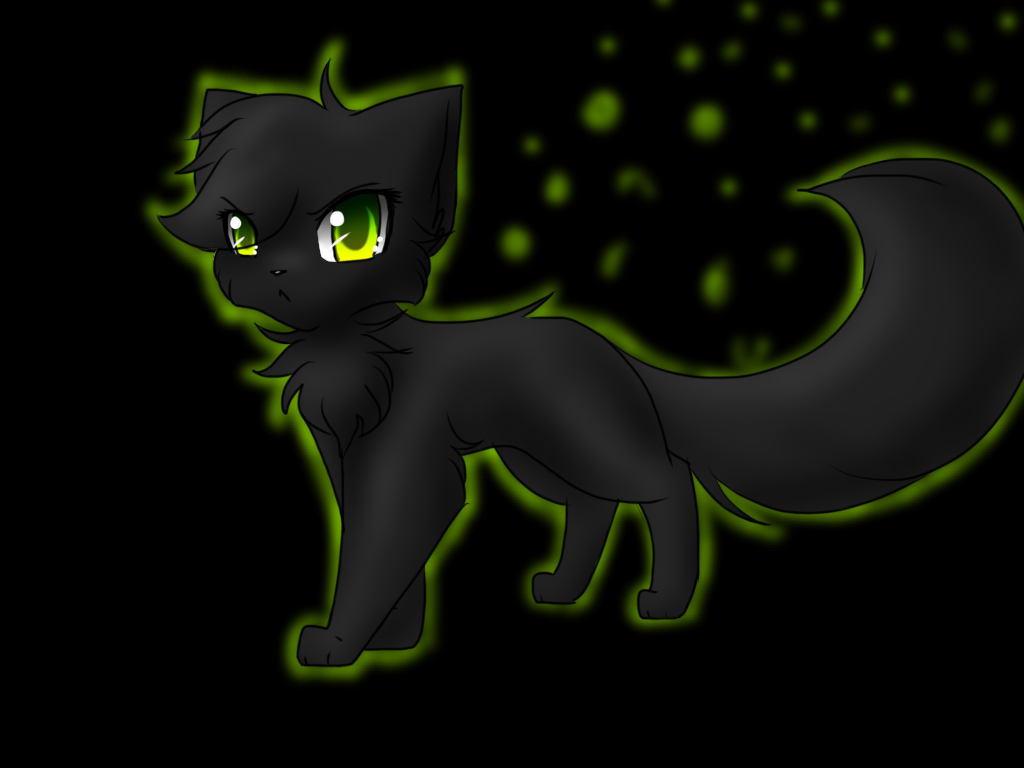 Do you love Hollyleaf no matter how many mistakes she makes?
