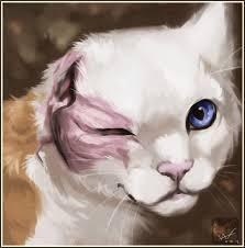 How did Brightheart lose one of her eyes?