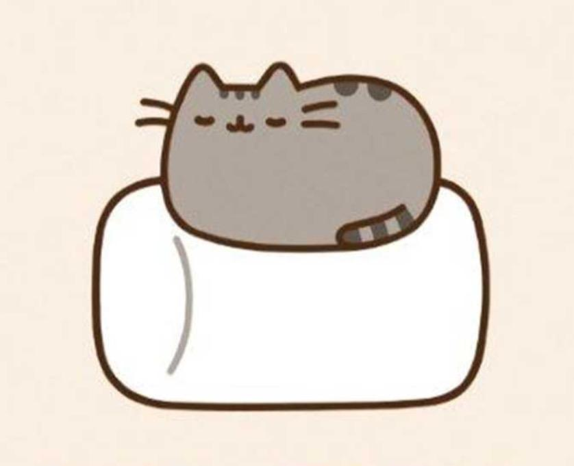 If Pusheen is in trouble, what does he do?