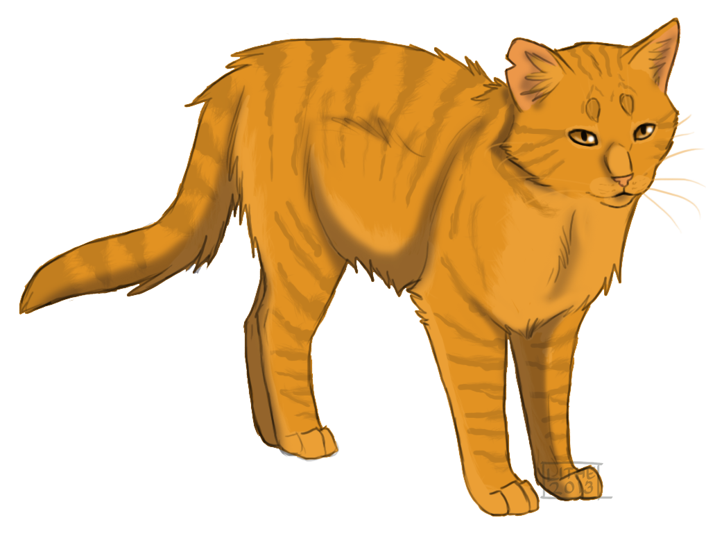 Which cat did lionblaze fall in love with?