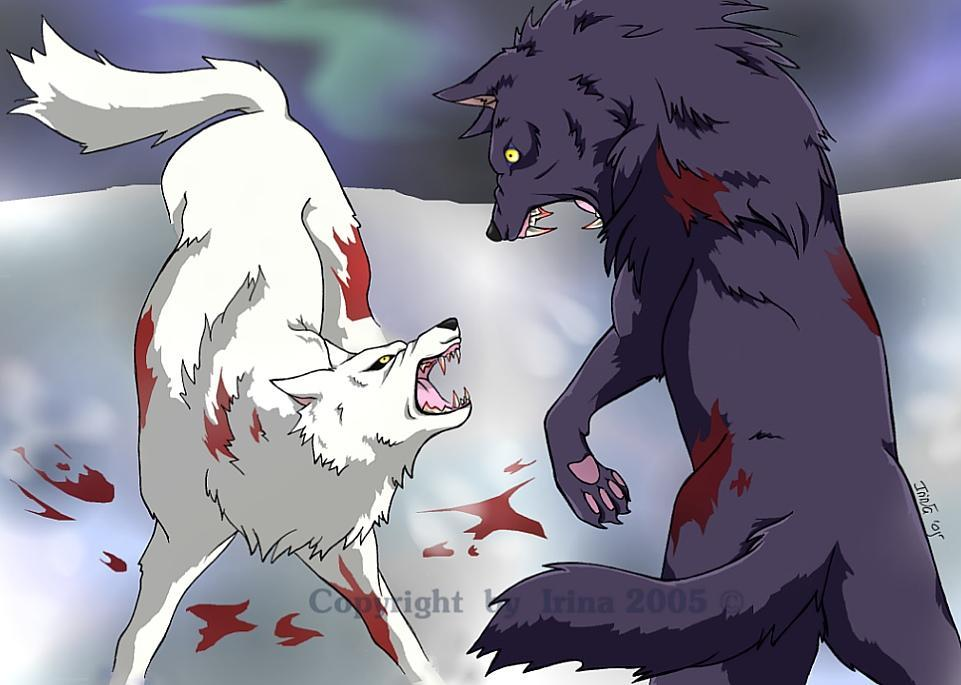 what if you got attacked by a southpaw wolf