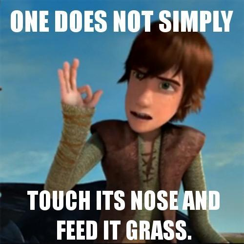 Who voices Hiccup?