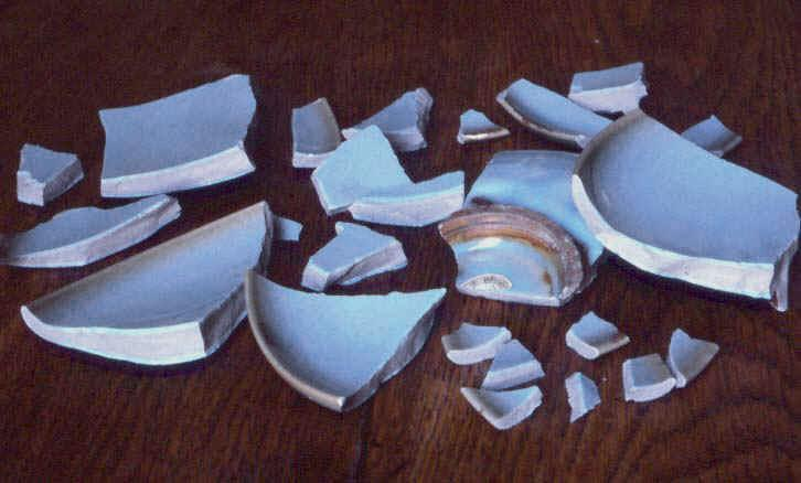 Situation 8.) Your parents are going out for the night, and leave you to watch the house. You accidentally trip in the living room, and your mother's favorite vase crashes to the ground, immediately shattering. What do you do?