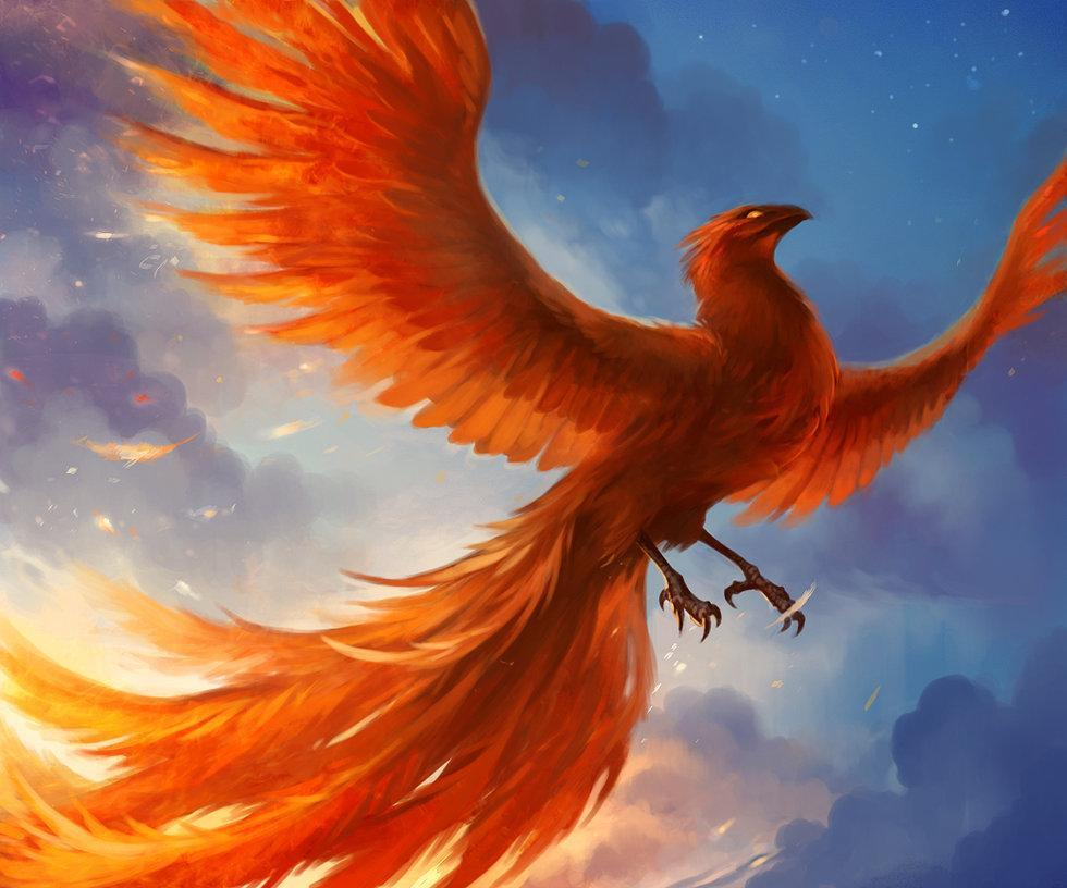 What is the main phoenix named?