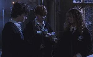 Which potion did Harry, Ron and Hermione use in Moaning Murtle's bathroom?