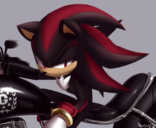 Shadow opens the door and doesn't look happy to see u or Sonic. He ask what you want. You say...