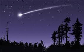 "You were walking through the woods when you see a shooting star. ""Star night, star bright. I wish I may, I wish I might. Have freedom I've wanting all my life."" You watched as the star got closer a lot closer. "" Wha...""  You quickly climb the nearest tree."