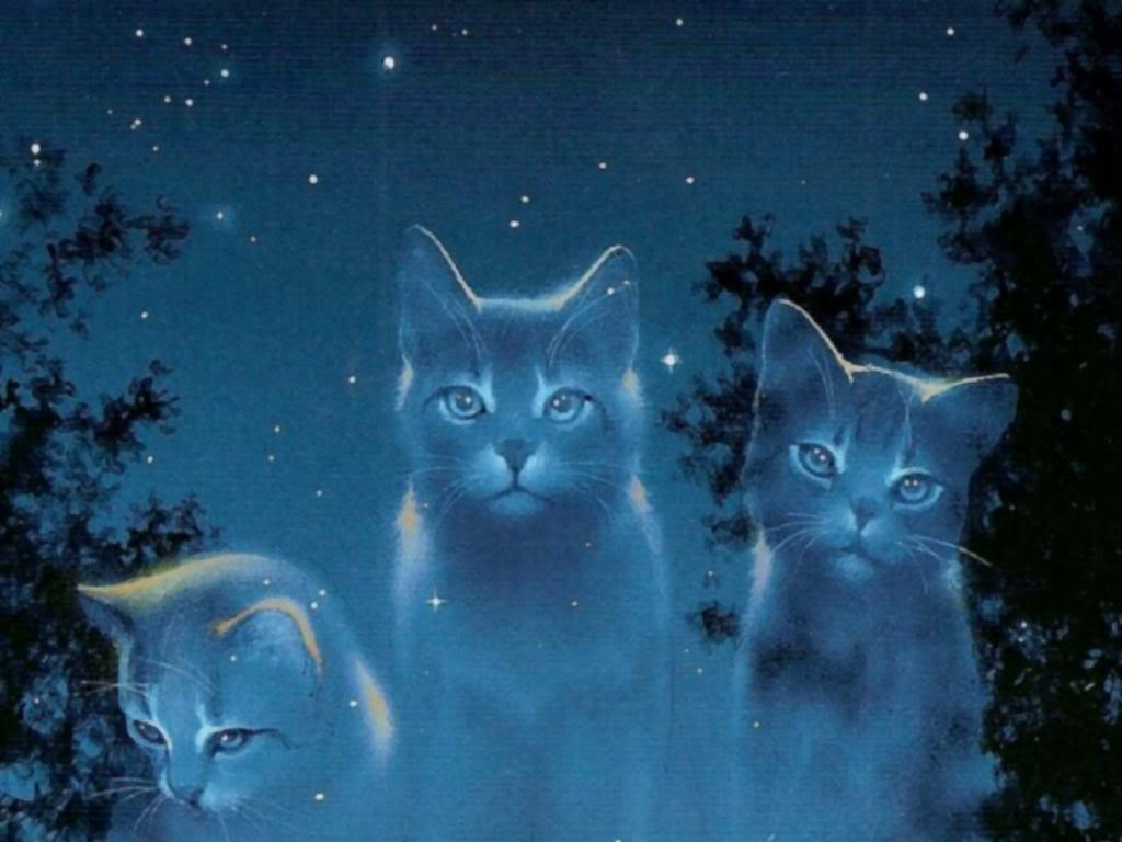 Do you know who Starclan is?