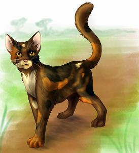 Who is the Thunderclan medicine cat?