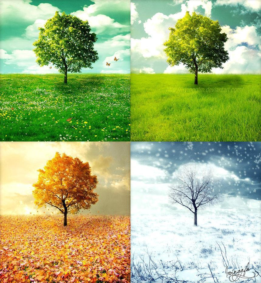 what is your favorite season