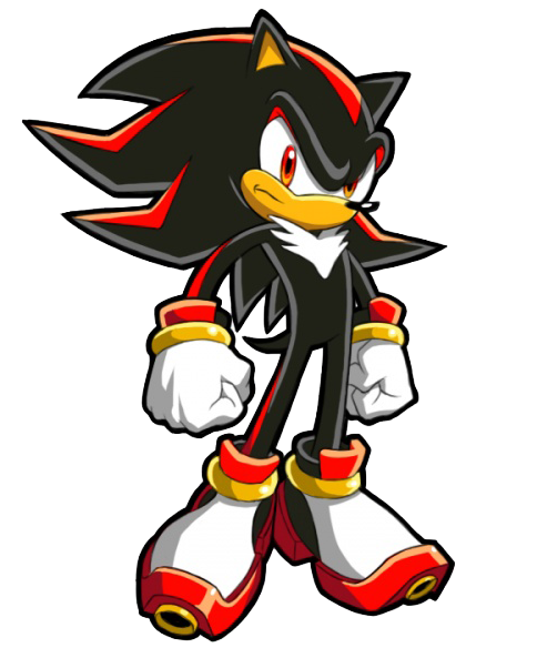 Suddenly you feel a sharp pain at the back of your head and you fall to the floor the only thing you see before blacking out is Shadow smirking.