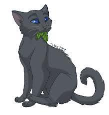 What sign did Cinderpelt get meaning Bluestar will rot from the inside?
