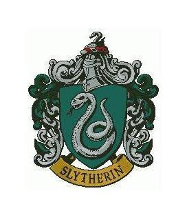 You are being bullied by a Slytherin! What do you do?
