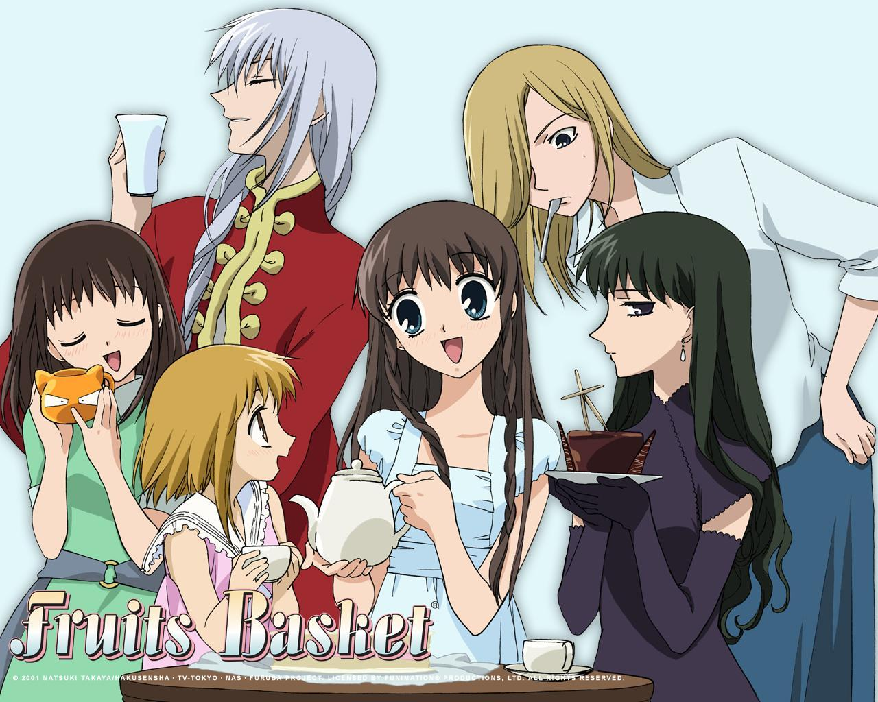 *puts away armor for now* Anyways, what's your opinion on Fruits Basket?