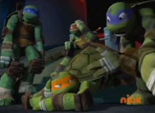 Does Donnie or Mikey, Raph, or Leo have a crush on April?