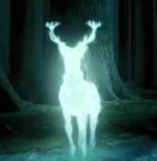 Which of these patronuses belong to any character. (basically, tick the animals who who somebody has the patronus of e.g. stag, because harry's is a stag.)