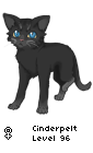 blueStar's name as a warrior ( what warrior name blueStar was given )