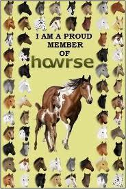 how many different breeds of horses are there?