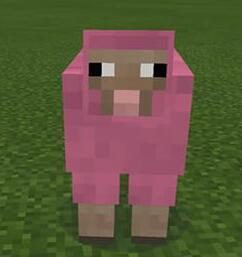 Who did Thatonetomahawk prank with pink sheep? ( Put their channel )