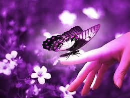 What would you say if a butterfly landed on your finger?