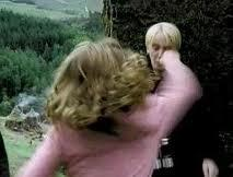 which one of these few reasons is why hermione punches malfoy on her way down to hagrids hut with Ron and harry?