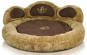 What type of dog would look best in this bed for an advert?