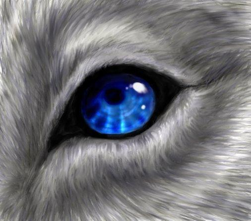 what color of wolf eyes do u have