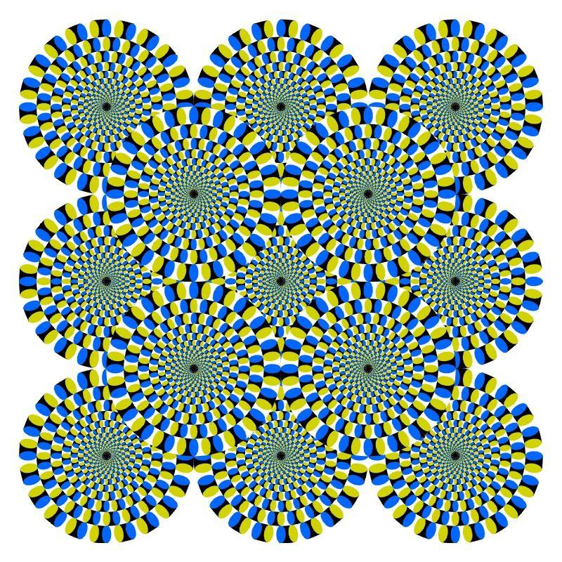 Does this picture seem to move?