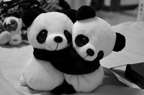 Finally do pandas hug?