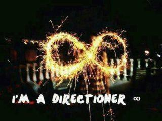 How do you know if someone is a true Directioner