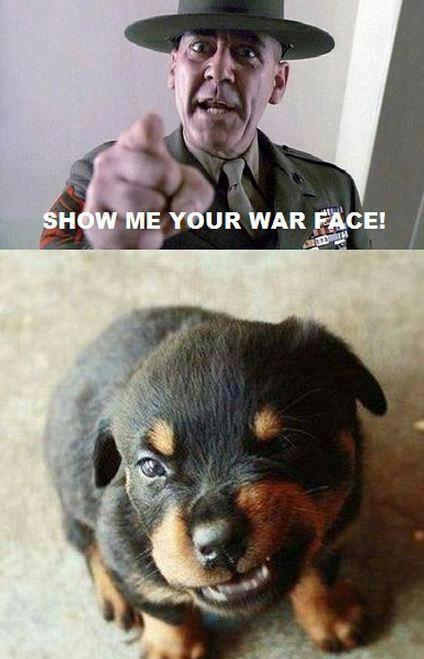 wow that was a chose one we should find the next contestant but befoe we do... SHOW ME UR WAR FACE!!!