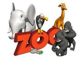 When I say Zoo what do you think of?