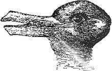 The hardest question of the world: Duck or rabbit