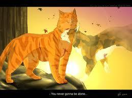 Who does Firestar love?