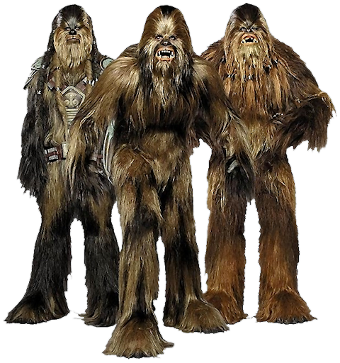 what was the name of the wookiee jedi