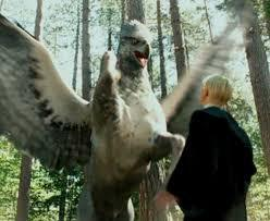 Hagrid warns his care of magical creatures class that it is extremely dangerous to insult a hippogriff,Draco who wasn't listening insults the hipprogriff on which they are studying and gets attacked straight away,what was it that Draco called teh hipprogriif while insulting him?