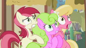 what are the flower ponies names ?