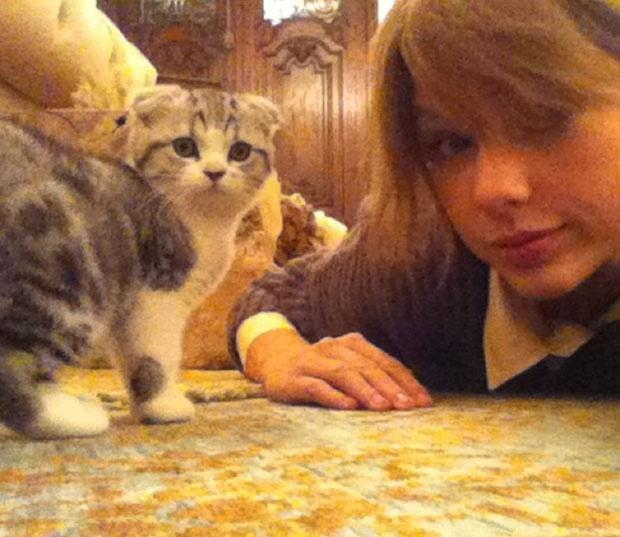 Does Taylor have a cat? If so what is it's name?