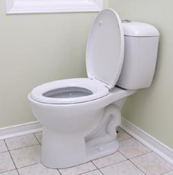 "This is a picture of a toilet. There is nothing to ""Get"", no cryptic undertone. It is simply an arbitrary image that I have made you view. Now that you have, you can never un-see it. It is done, and whether or not you answer ""yes"", or conversely, ""No"", it is a thing that is done and cannot be reversed."