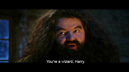 Do you enjoy being a wizard?
