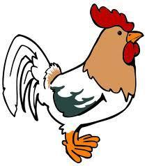 If a rooster is on then roof and lays an egg, which way would the egg fall?