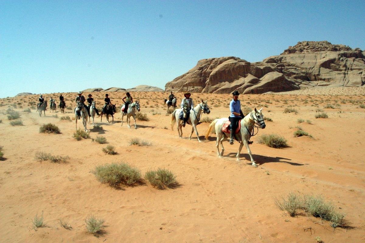 A friend of yours suggests you to go on a horse trip in the desert, what is your reaction ?
