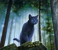 Who has jayfeather as there brother