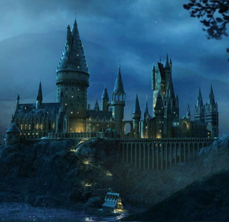 Do you want your character to be a part of Hogwarts School?