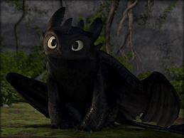 what type of dragon is toothless