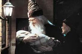 #1 Who brought Harry to the Dursley's?