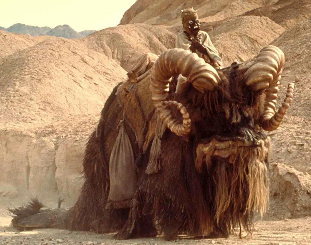 "What creatures did the ""Sand People"" ride?"