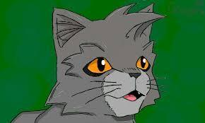 What is Graypaw's warrior name?