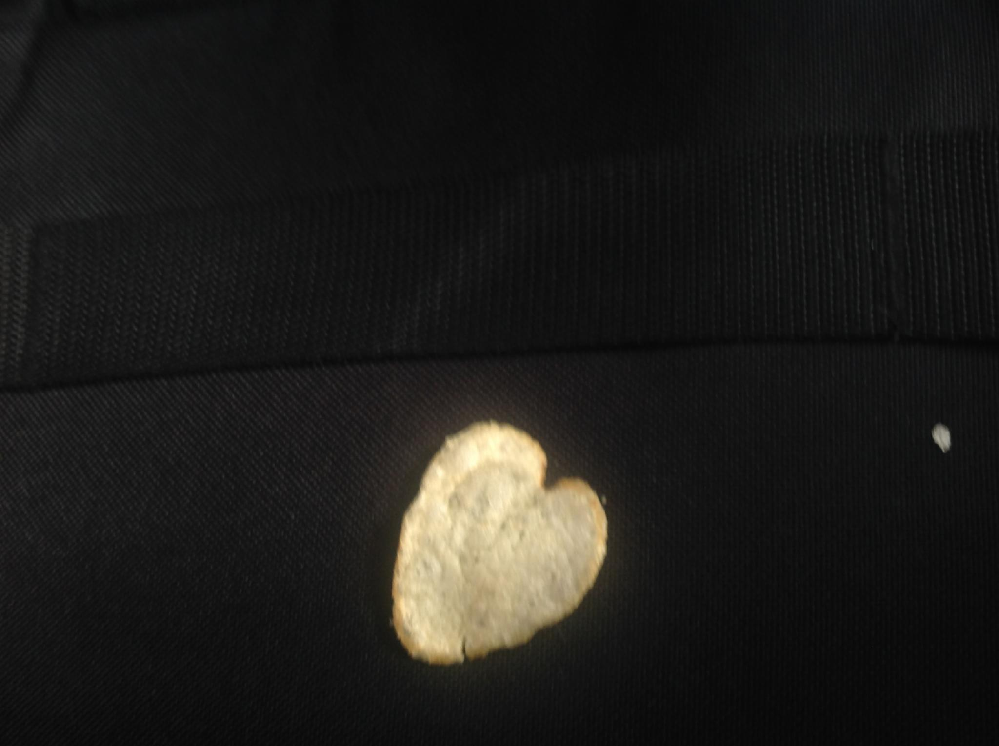 Do you like this heart shaped potato chip